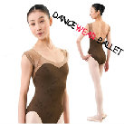 Sexy Mesh Embroidery Dancewear Ballet Leotard