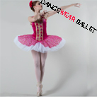 Sweat Fairy Professional Sequin Performance Dance Ballet Tutu Costume