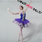 Professional Fairy Flowers Performance Dance Ballet Tutu Costume