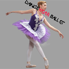 Professional Fairy Embroidery Performance Dance Ballet Tutu Costume