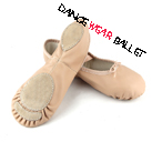 Professional Reinforced Sole Deluxe Dance Shoes Ballet Slipper